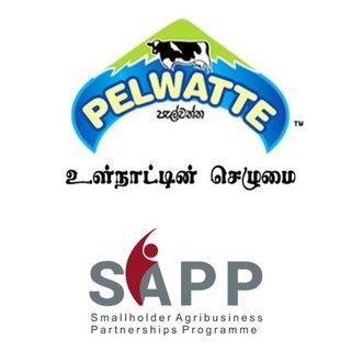பாற்பண்ணைத் துறைக்காக SAPP இடமிருந்து 463 மில்லியன் திட்ட வசதியை பெற்றுக்கொண்ட Pelwatte